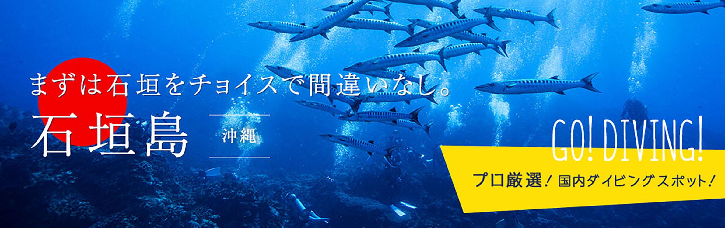 石垣島ダイビング情報