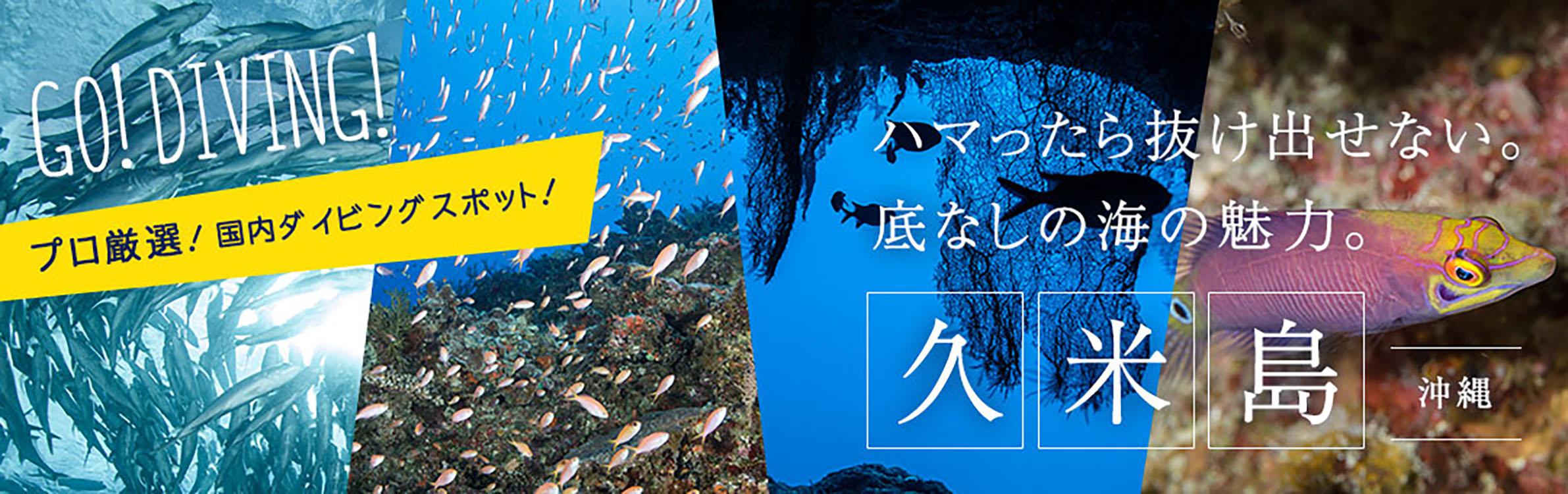 久米島ダイビング情報