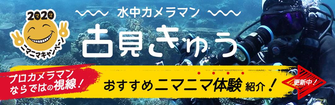 古見きゅうニマニマスポット紹介