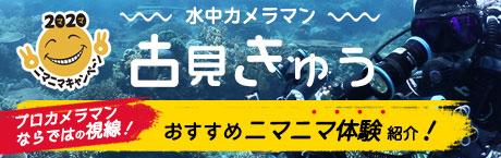 古見きゅうニマニマ体験紹介