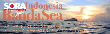 SORA-Web バンダ海クルーズ