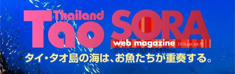 SORA-web タオ