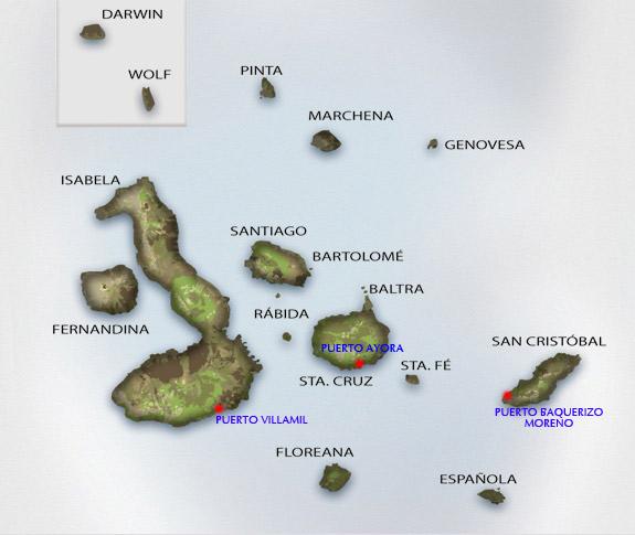 ガラパゴスの特徴1-1