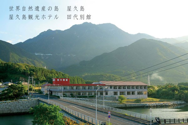 屋久島観光旅館 田代別館3-1