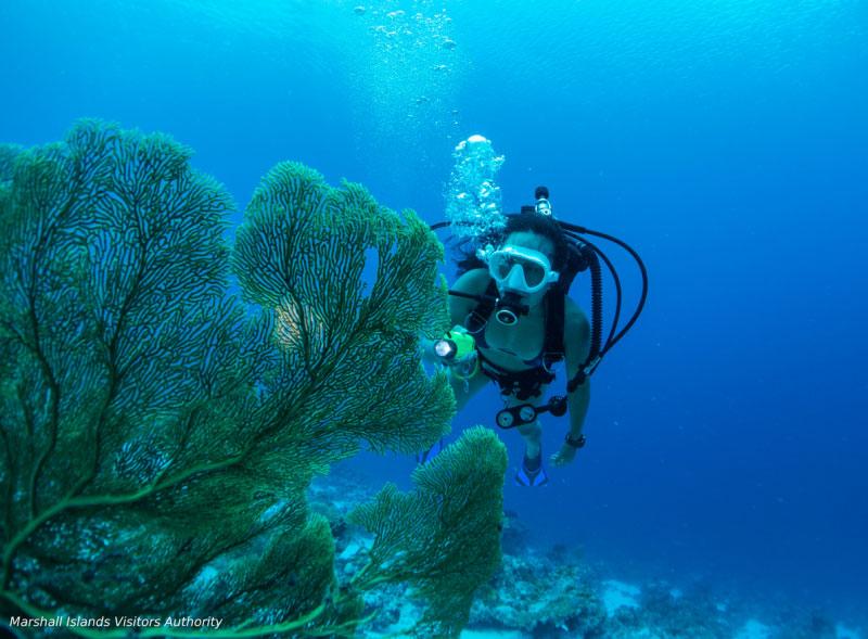 サンゴの楽園でダイビング1-4