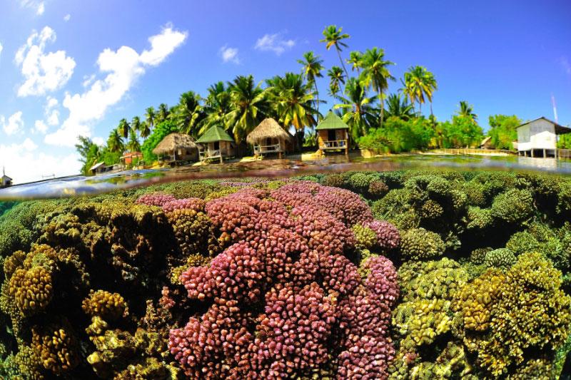 手付かずの自然が魅力の美しい島1-1