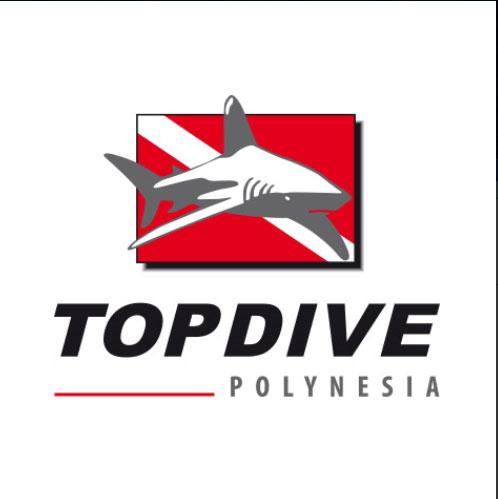 TOP DIVE1-1