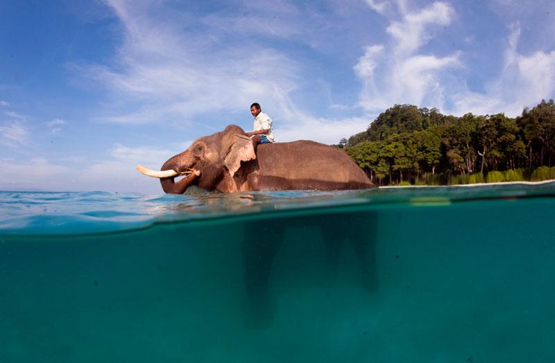 インド・アンダマン諸島のダイビング情報1-2