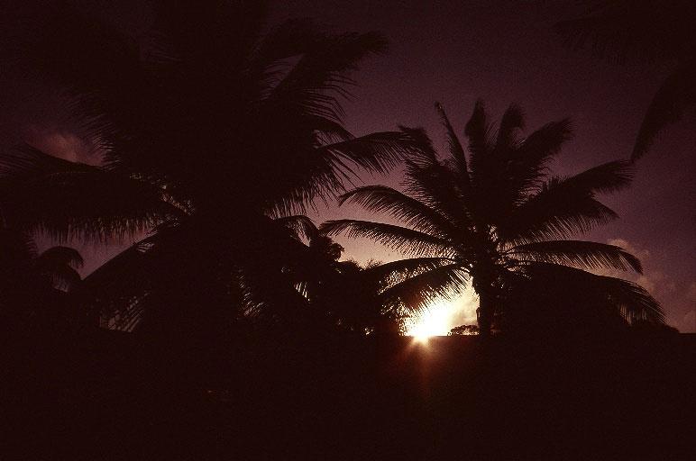 太平洋クリスマス島 画像1
