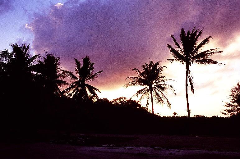 太平洋クリスマス島