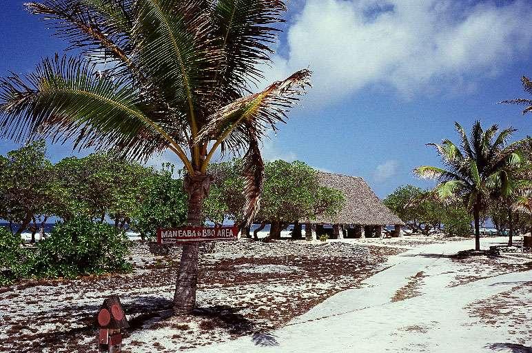 太平洋クリスマス島 画像3
