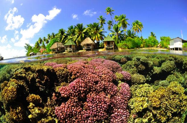 ファカラバ島 画像6