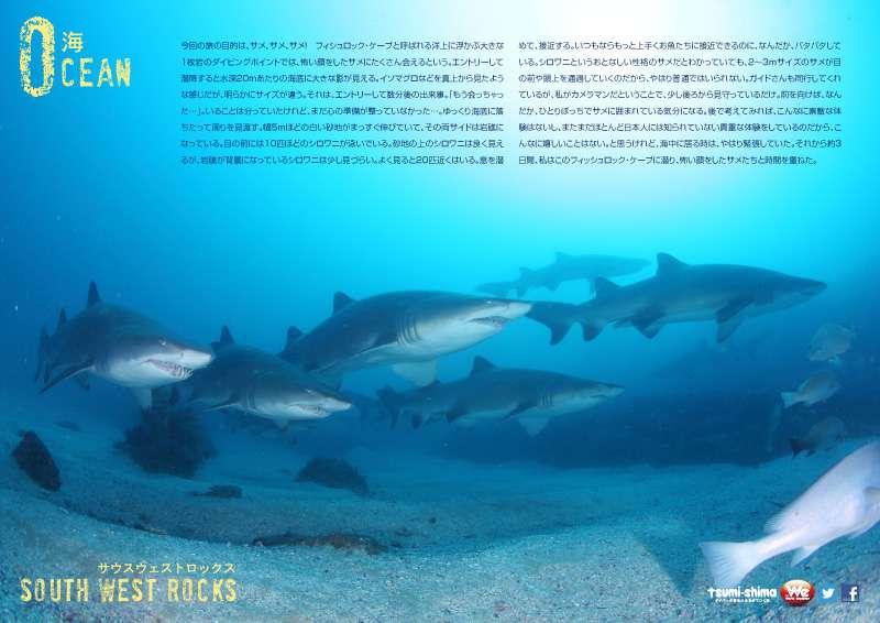 羽田発 カンタス航空 サウスウエストロックス  最大4ダイブ付 6日間3