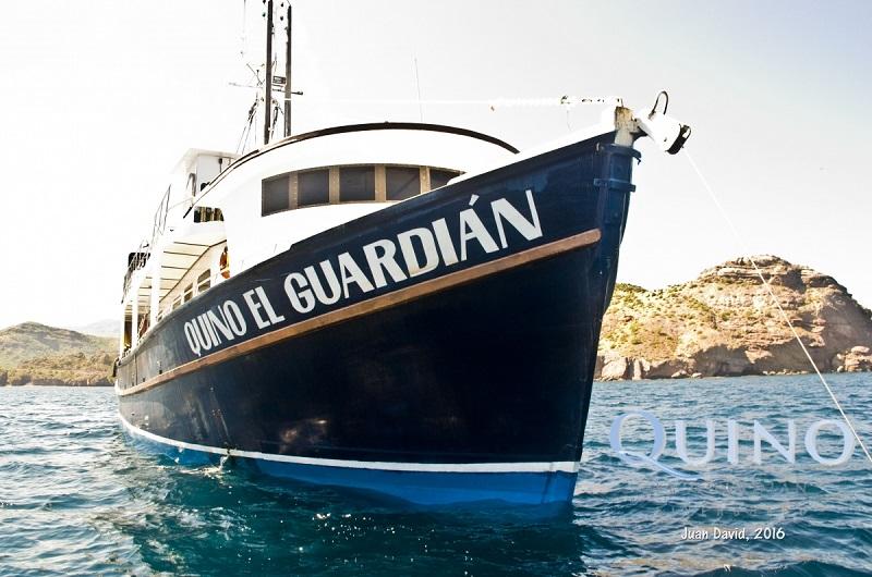 Quino El Guardian(キノ エル ガーディアン)5-1