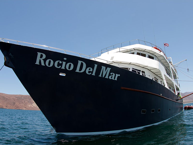 Rocio Del Mar(ロシオ デル マール)4-1