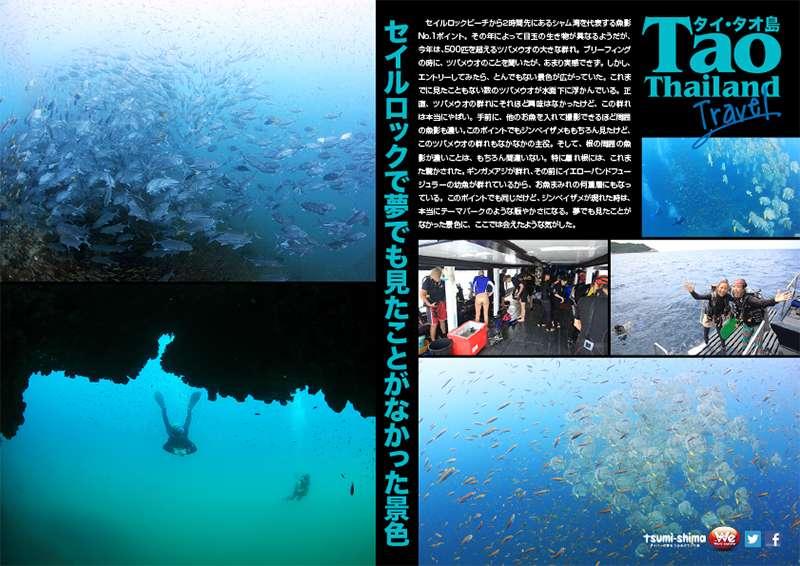 成田発 タイ国際航空 タオ  最大10ダイブ付 6日間6