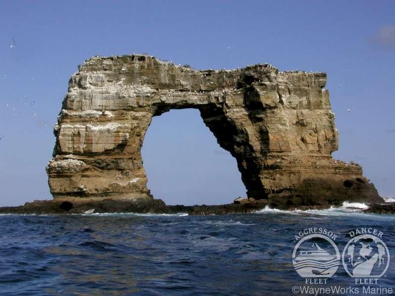 ガラパゴス諸島 画像3