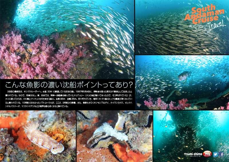 アンダマン諸島 画像12