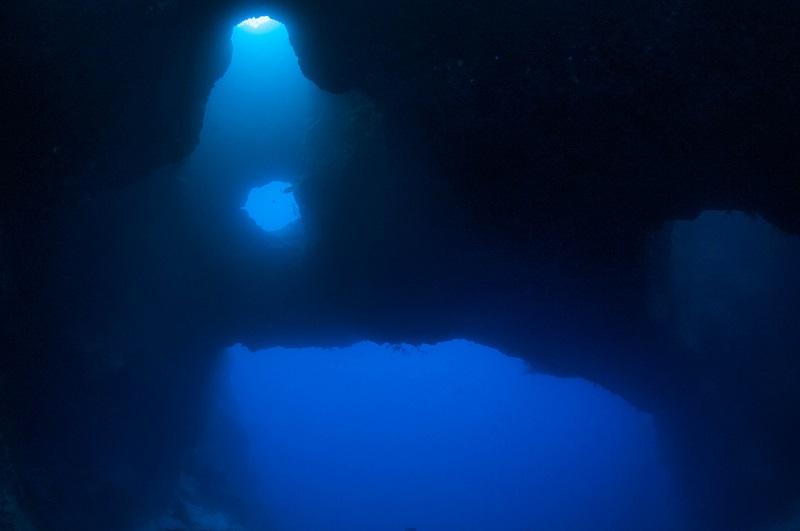 ダイバーを引きつける海2-2