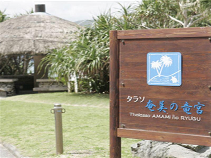 タラソ 奄美の竜宮5-1