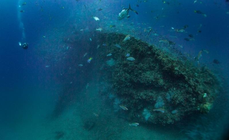 ヨンガラレックの海1-1