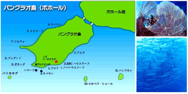 ボホールの海はどんな海!?2-3