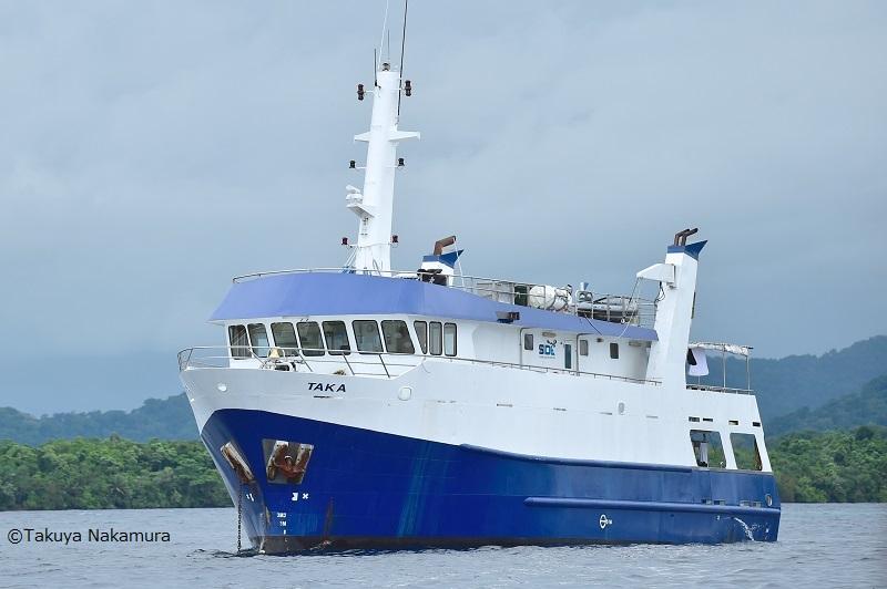 【ソロモン諸島】魚群にサンゴ、レック!野生の海!ソロモン諸島!1