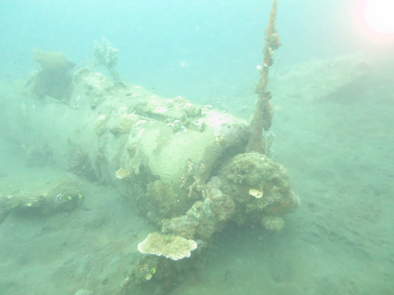 AIRPLANE WRECK DIVE1-1