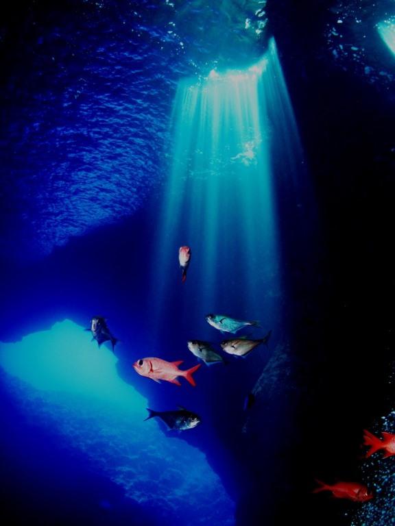 Senhanon Cave /通称:ロタホール8-1