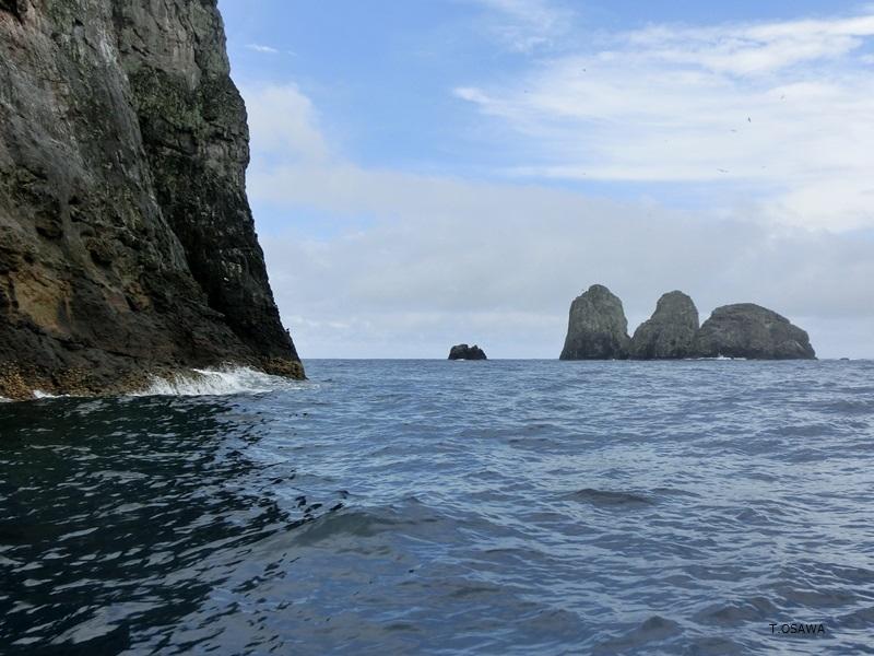 マルペロ島には25のポイントがメインの岩周辺に点在1-3