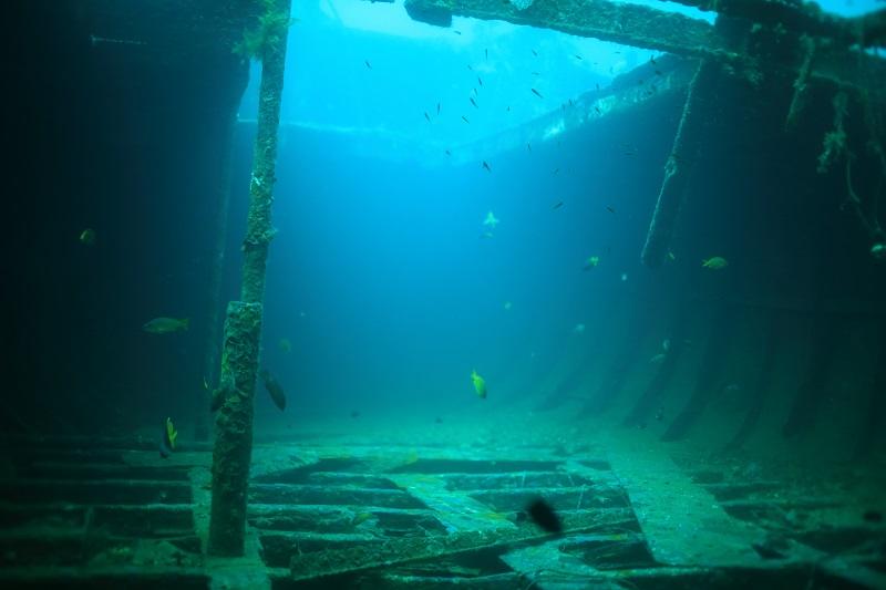 Alma jane wreck. アロマジェーン レック3-1
