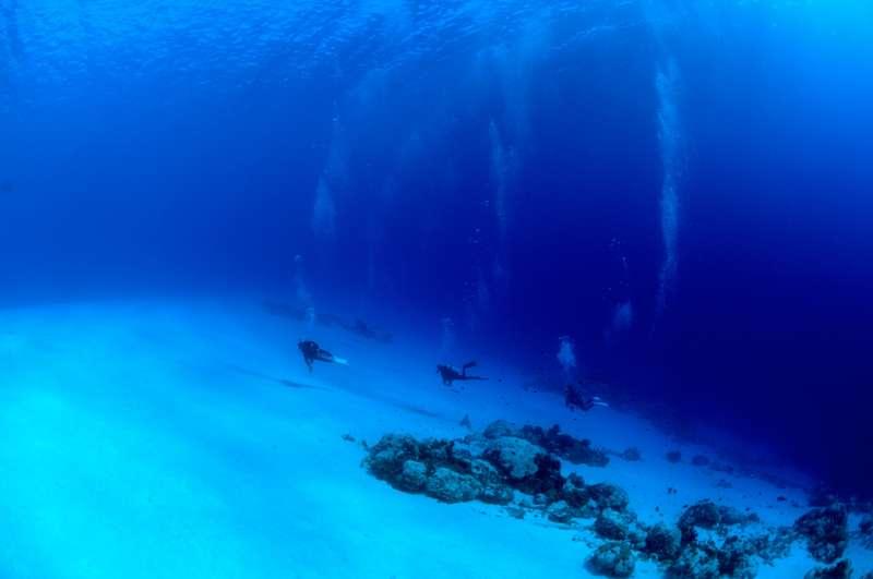 アルノ(Arno Atoll) *ボートで60~70分4-1