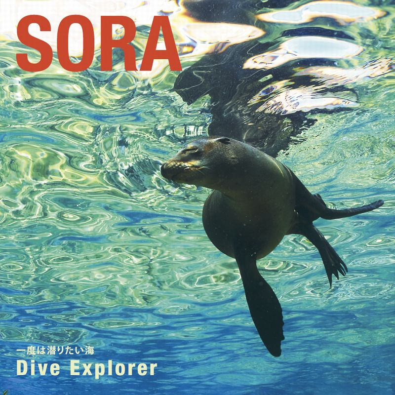 SORA  1度は潜りたい海 Dive Explorer1