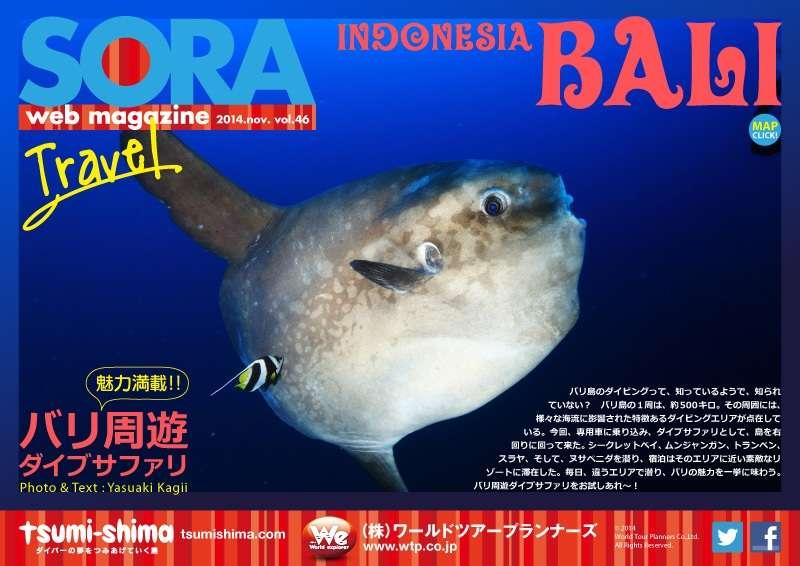SORA-web バリ写真
