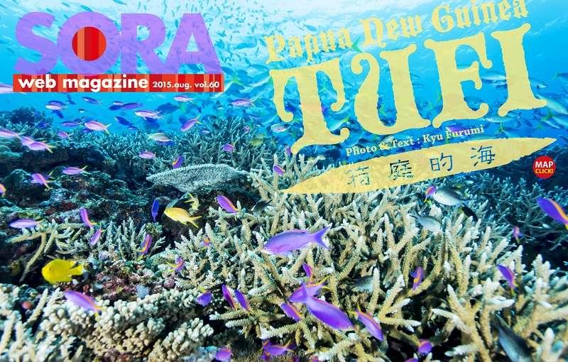 SORA-web トゥフィ写真