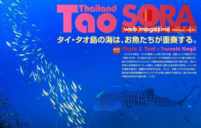 SORA-web タイ・タオ島UP写真