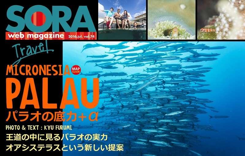 SORA-web パラオUP写真