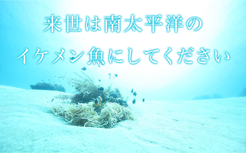 君の名は…? ※ダイビング関連記事です。写真
