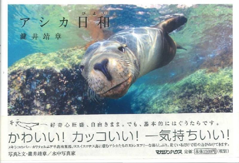 ラパス★☆★☆ラコンチャ宿泊キャンペーン★☆★☆写真