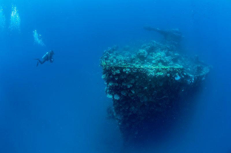 サンゴに彩られた沈潜の沈むチューク!!4