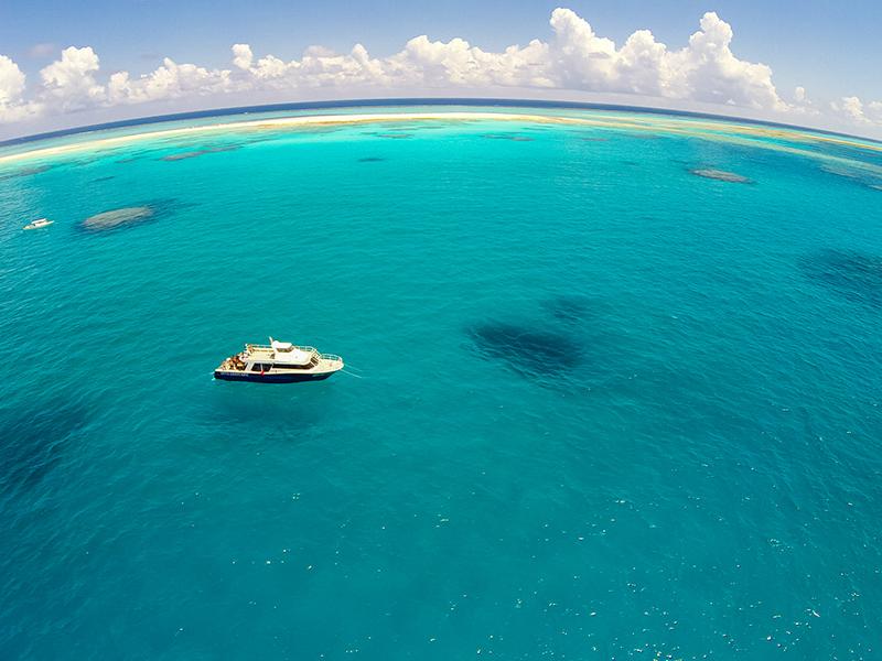 【久米島】なんと送迎付き!オールマイティな海を満喫しよう♪
