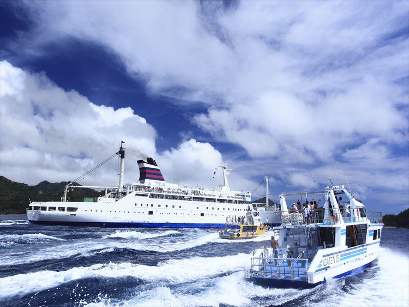 7月からは新造船!世界遺産小笠原でダイビング三昧写真