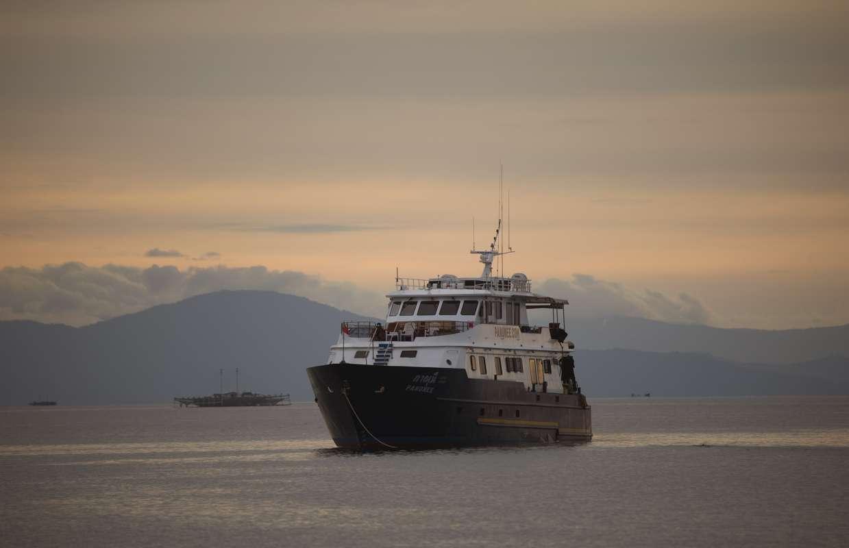 【インドネシア】ハンマーリバーバンダ海&マクロの秘宝 アンボン クルーズ1
