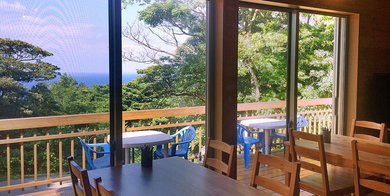 海陸どちらも圧倒的な魅力!4ダイブ付4日間屋久島ツアー!7
