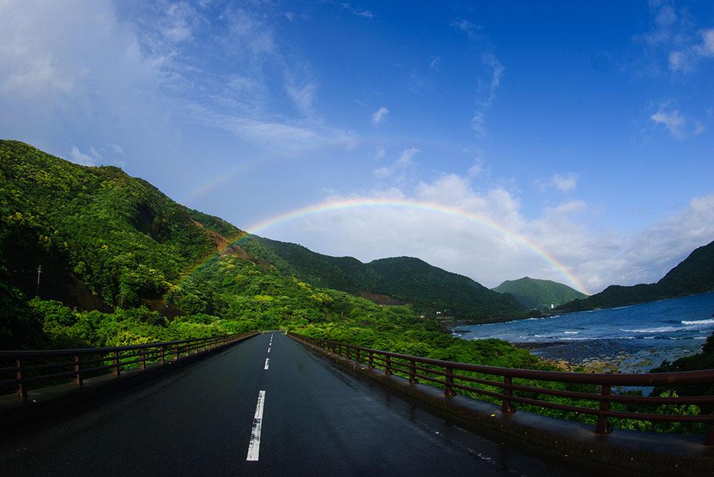 海陸どちらも圧倒的な魅力!4ダイブ付4日間屋久島ツアー!1