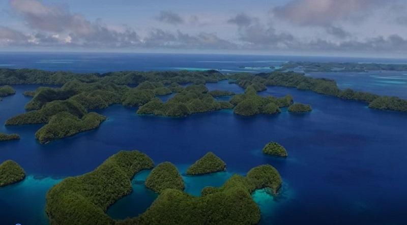 パラオ共和国「プリスティン・パラダイス環境税」導入のお知らせ写真