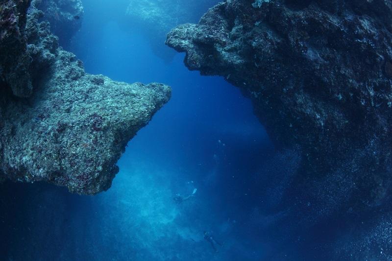 【パラオ】マクロにも注目の海!写真