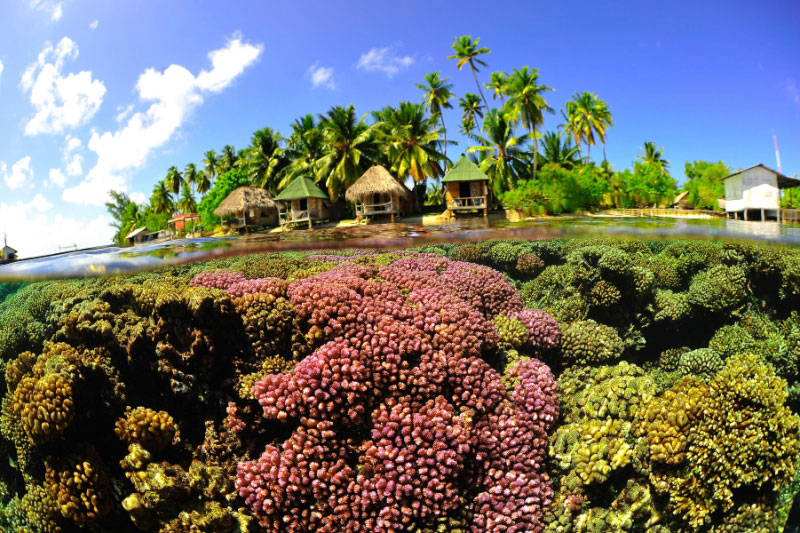 手付かずの自然が魅力の美しい島13-1