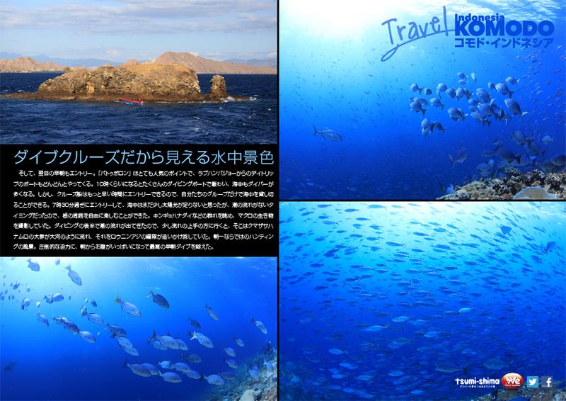 関西発 航空会社未定 コモド諸島  最大15ダイブ付 8日間5