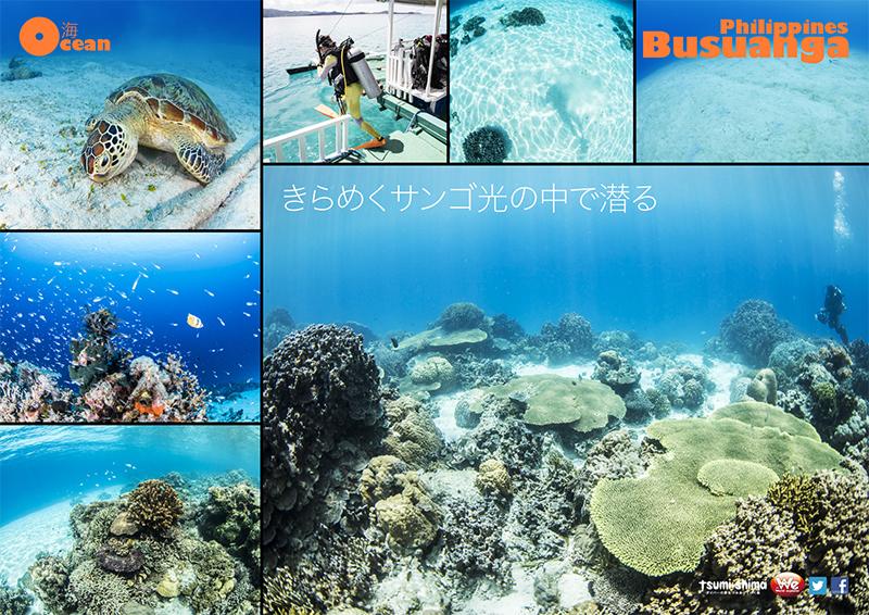 成田発 フィリピン航空 ブスアンガ  最大6ダイブ付 6日間15